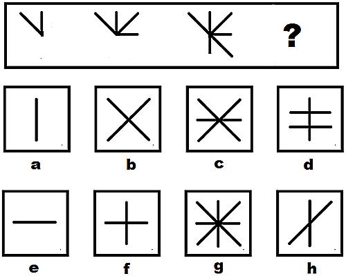 Câu hỏi test iq 11