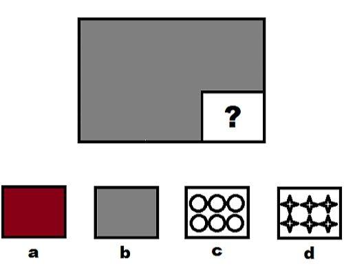 Câu hỏi test IQ 2
